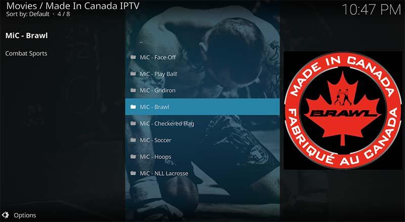 MIC-made-Canada-ufc-217-kodi-free-streams